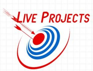 LiveProjects 300x232 Advantages of Live Project Training
